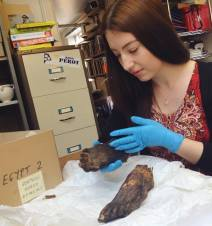 Examining mummified feet